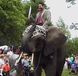 Stadtwerkechef kam mit elefant zum feiern for Raumgestaltung aue